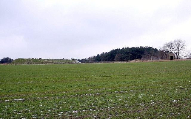 Hilltop above Crag Plantation