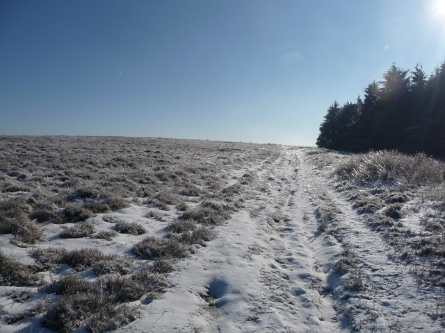 Path onto Mynydd Maen