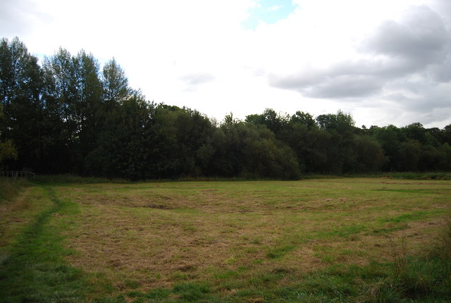 Bramford Meadow