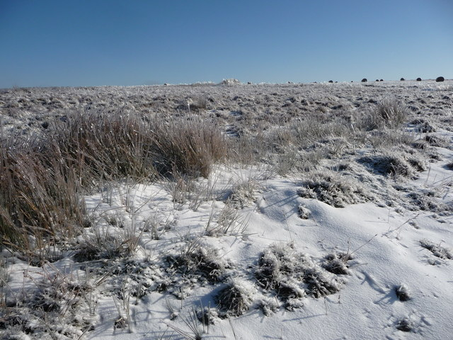 Part of Mynydd Maen in winter