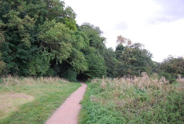 Gipping Way enters Hazel Wood