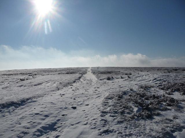 Path on Mynydd Maen