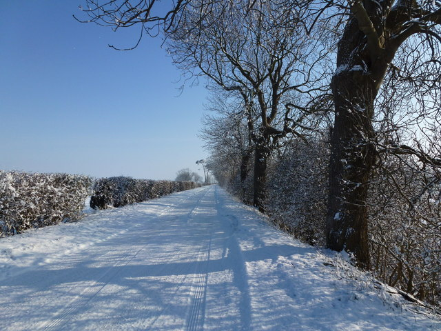 Snow covered -  Barge Road, Holbeach St Matthew