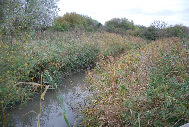 Ditch, RSPB Reserve
