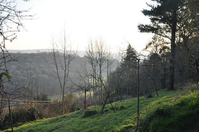 North Devon : Countryside View