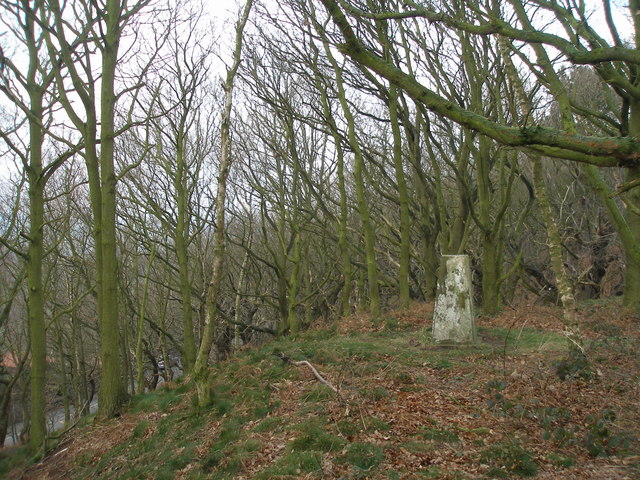 The trig point on Beacon Hill