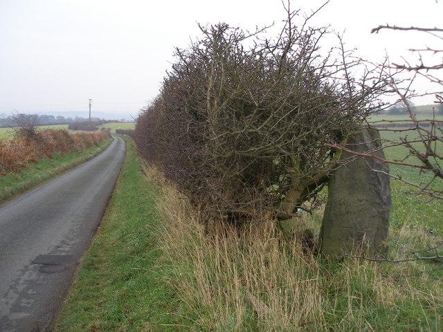 Cut benchmark on a gatepost beside Gipsy Lane