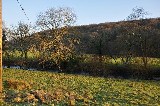 North Devon : Little Dart River