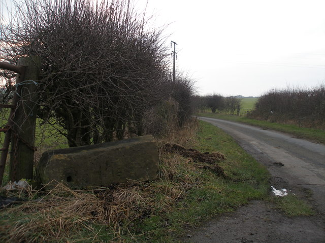 Gipsy Lane - fallen gatepost with cut benchmark
