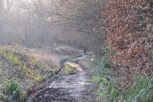 North Devon : Rock Hill