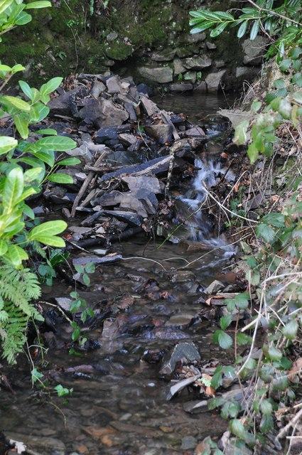 North Devon : Small Stream