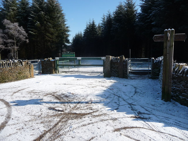 Forestry gate into Coetir Graig Wen Woodland