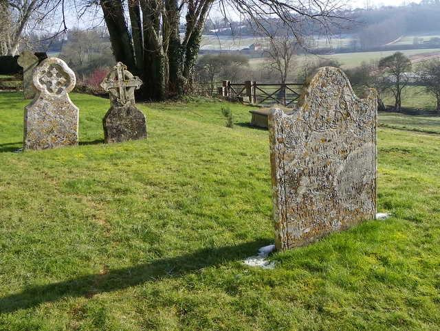 Lichen on the gravestones, St Mary's Churchyard