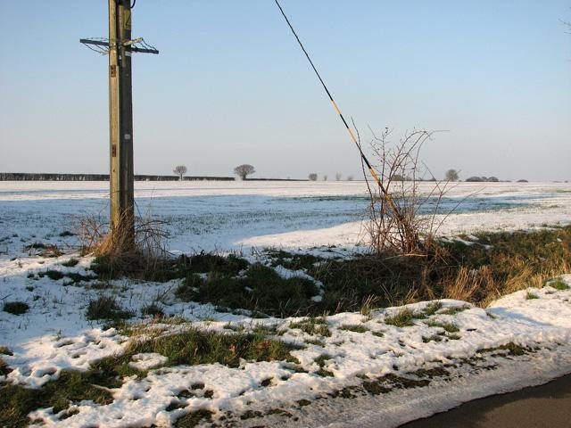 Snowy field by Coles Green Farm
