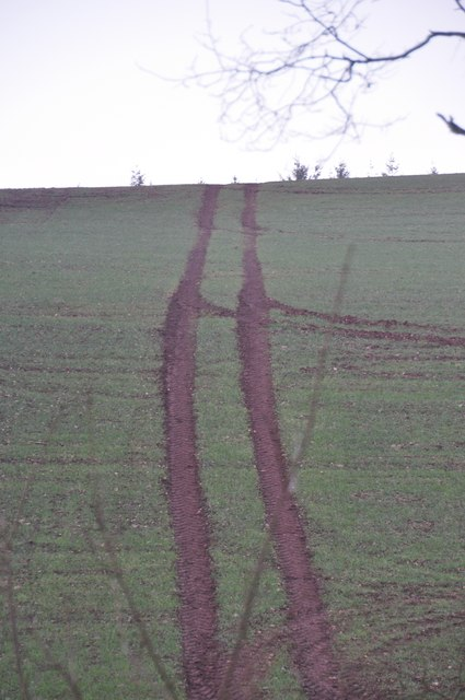 Mid Devon : Tractor Tracks in the Field