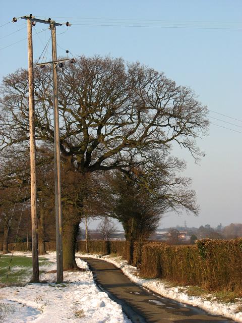 Telegraph poles on Wood's Hill, Washbrook