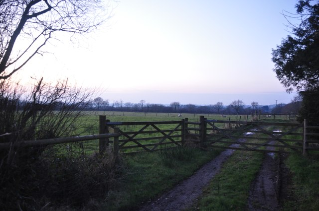 Mid Devon : Field Entrance