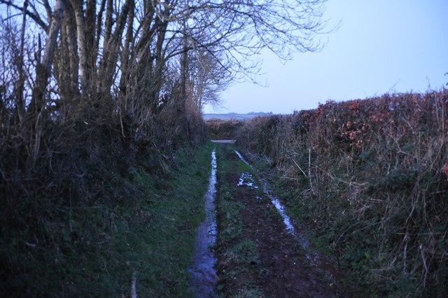 Mid Devon : Muddy Footpath