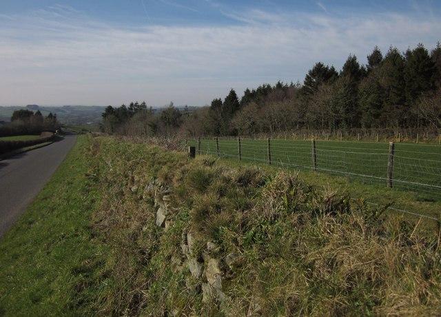 East Banbury Wood