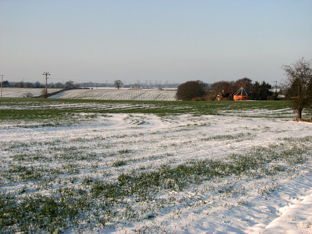 Undulating fields at Wood's Hill