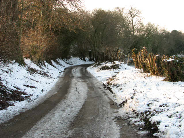 Descending Wood's Hill