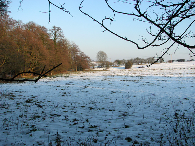Snowy pasture east of St Mary's church, Washbrook