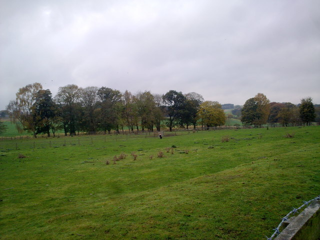 View from the railway walk