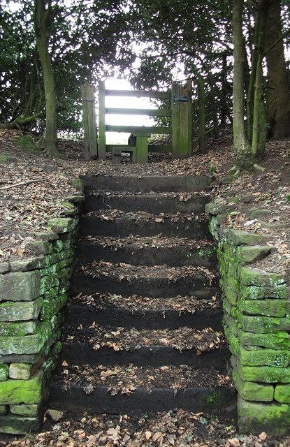 Footpath to Blindhurst Farm