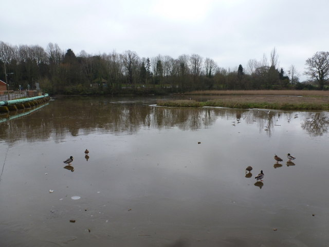 Eling: Bartley Water is frozen over