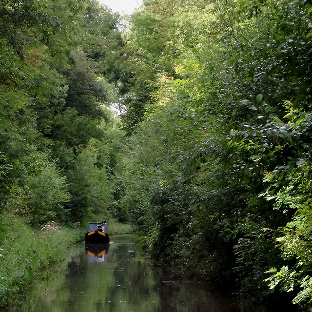 The canal in Woodseaves Cutting, Shropshire