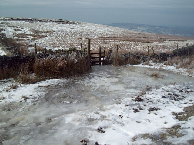 Thick Ice near New Allotments
