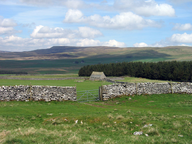 Dry stone wall with gate