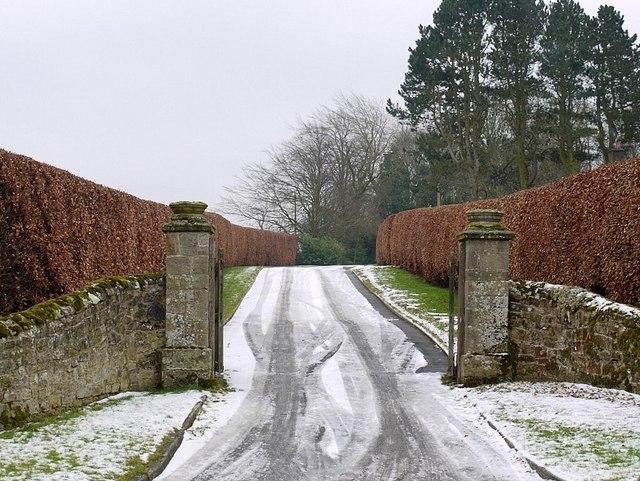 Drive to Hawkwell Grange
