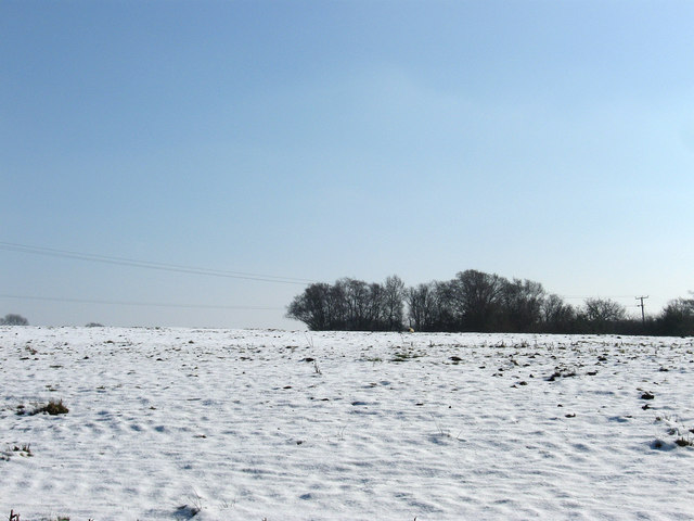 Balcomb Field