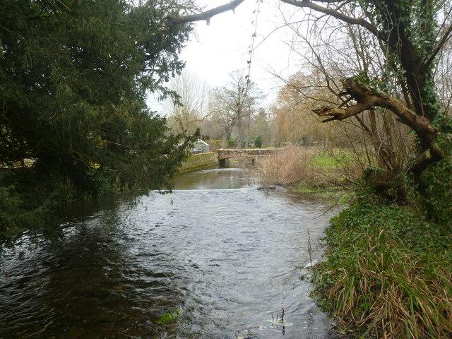 Witchampton, River Allen
