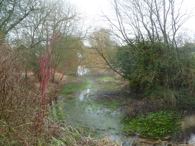 Witchampton, millstream