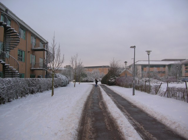 Path through the science park