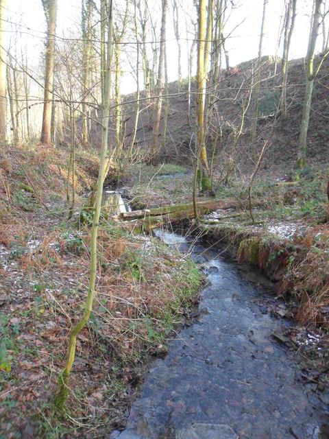 Lindley Dike, Lindley Wood