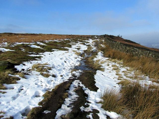 Ebor Way on Stead Crag