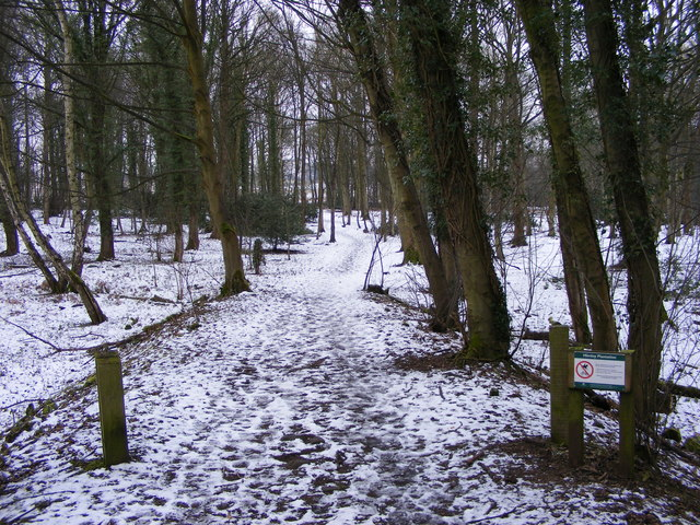 Himley Plantation Path