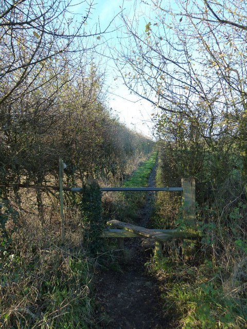 A circular walk around North Hayling (5)
