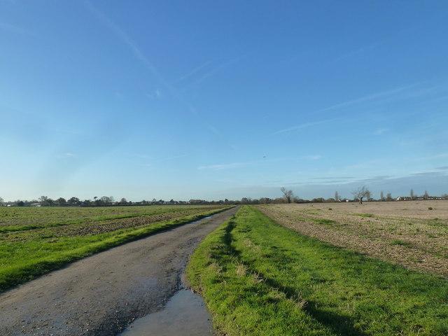 A circular walk around North Hayling (11)