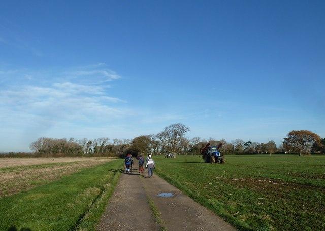 A circular walk around North Hayling (12)