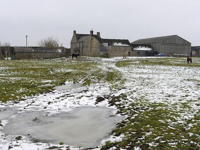 Thornham Hill Farm