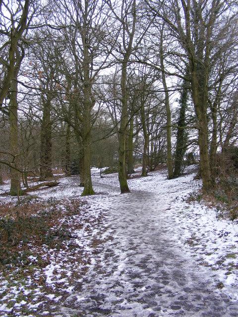 Plantation Path