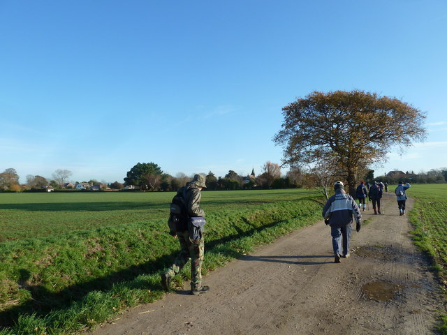 A circular walk around North Hayling (14)
