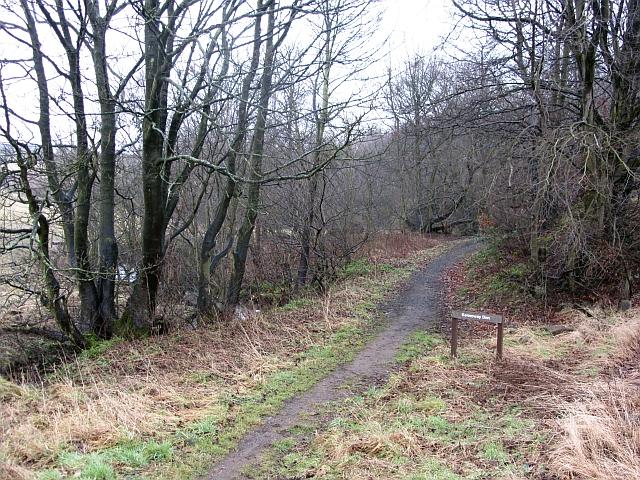 Kennoway Den path