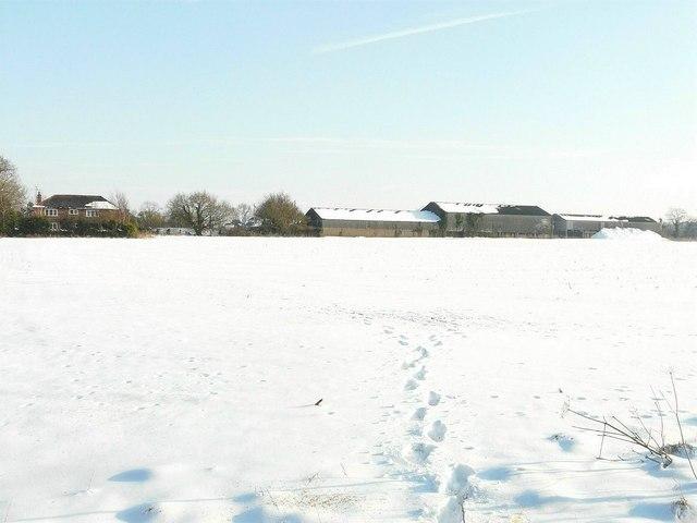Snodehill Farm