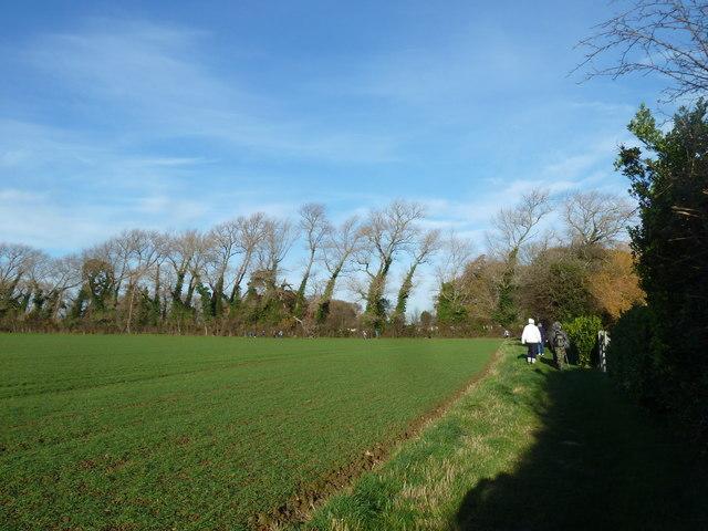 A circular walk around North Hayling (21)