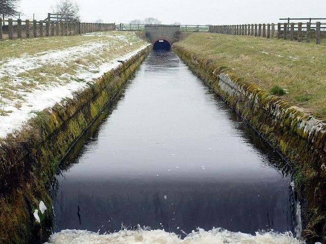 Whittle Dene Watercourse between Thornham Hill and Butcher Hill Farms